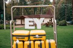 Путешествие, Ernst&Young