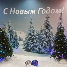 "Фотозона ""Снежный лес"""