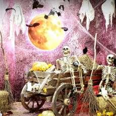 """Фотозона """"Шабаш на Хэллоуин"""""""